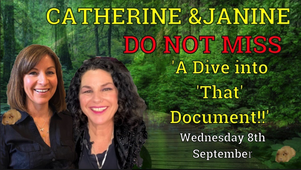 Tarot By Janine & Catherine Edwards: The Declaration of The People Doc Review 8th Sept