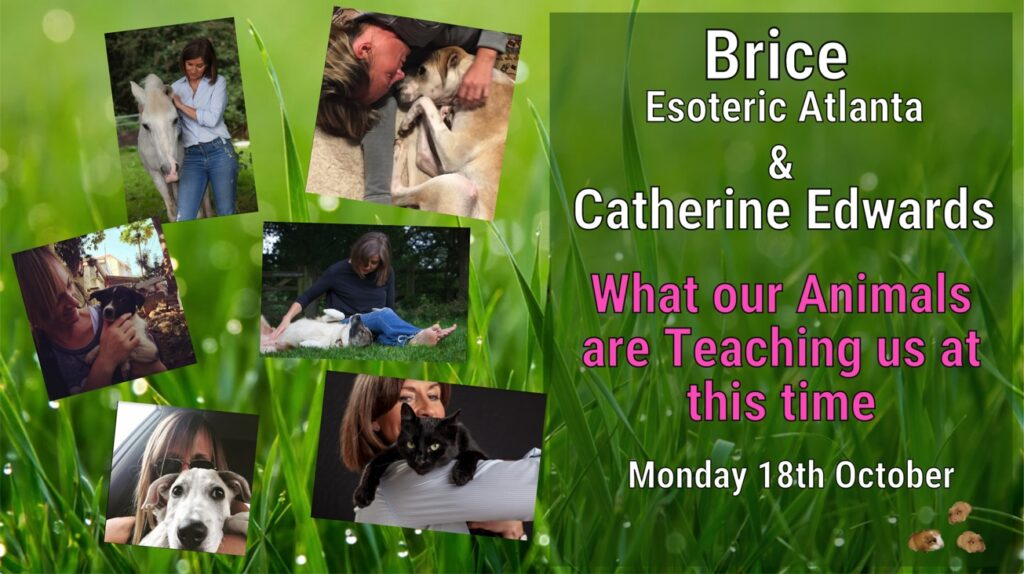 Brice Esoteric Atlanta & Catherine Edwards: What Our Animals Can Teach Us & Our Journeys so far..